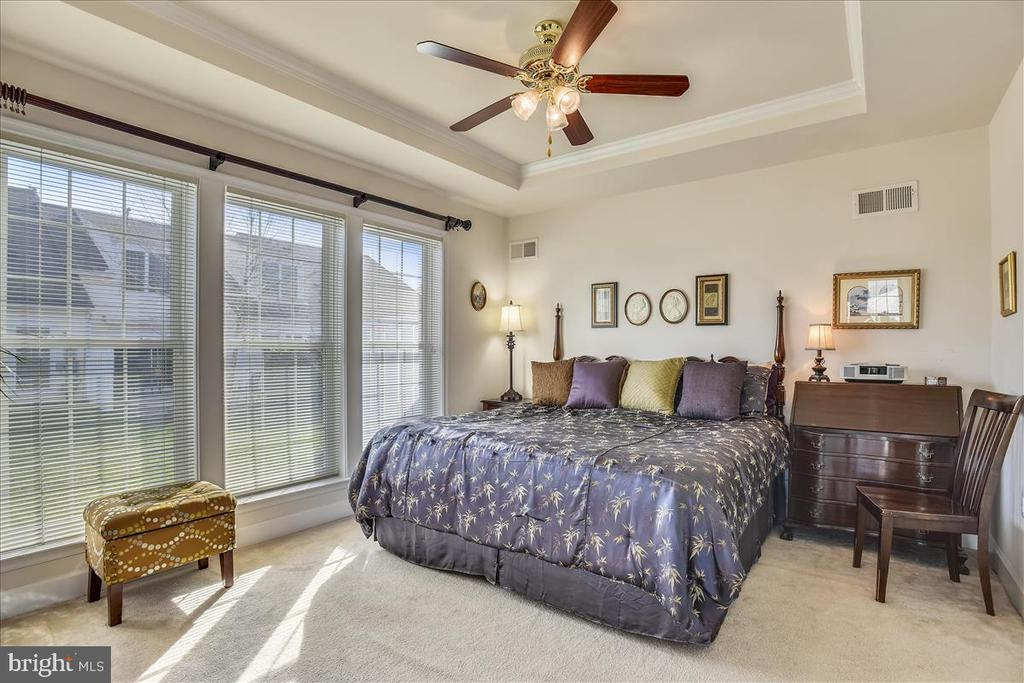 Spacious Master with trey ceiling and fan - 44482 MALTESE FALCON SQ, ASHBURN