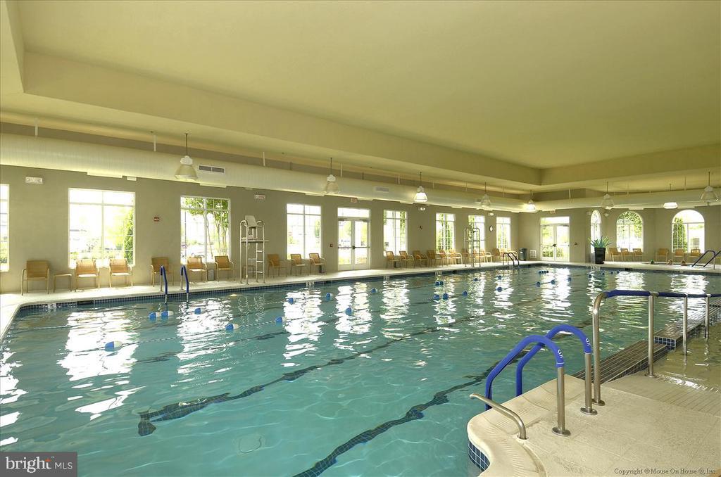 Potomac Green community indoor pool - 44482 MALTESE FALCON SQ, ASHBURN