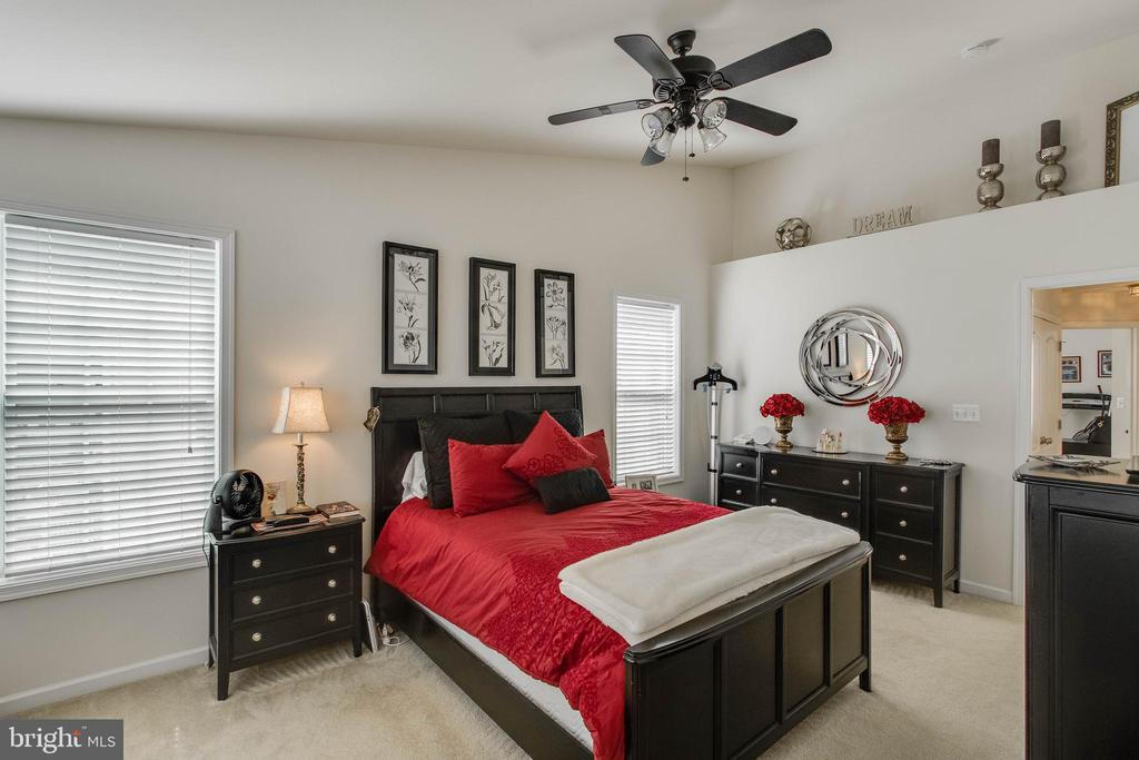 Master Suite with Vaulted Ceilings - 23098 SUNBURY ST, ASHBURN
