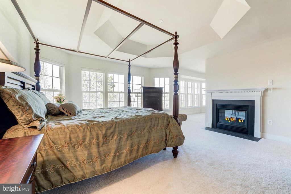 Master Suite warmed by 2-sided gas fireplace - 1224 ADMIRAL ZUMWALT LN, HERNDON