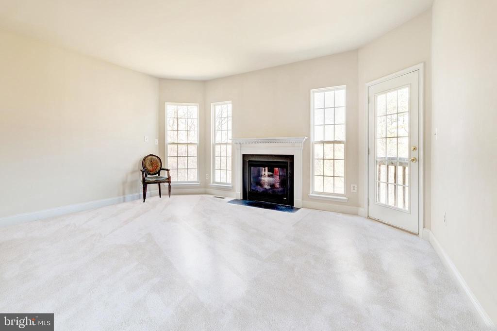 Family Room highlighted by gas fireplace - 1224 ADMIRAL ZUMWALT LN, HERNDON