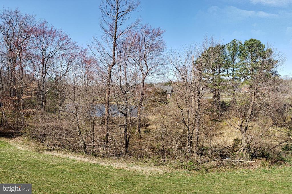 Backyard view - 1224 ADMIRAL ZUMWALT LN, HERNDON
