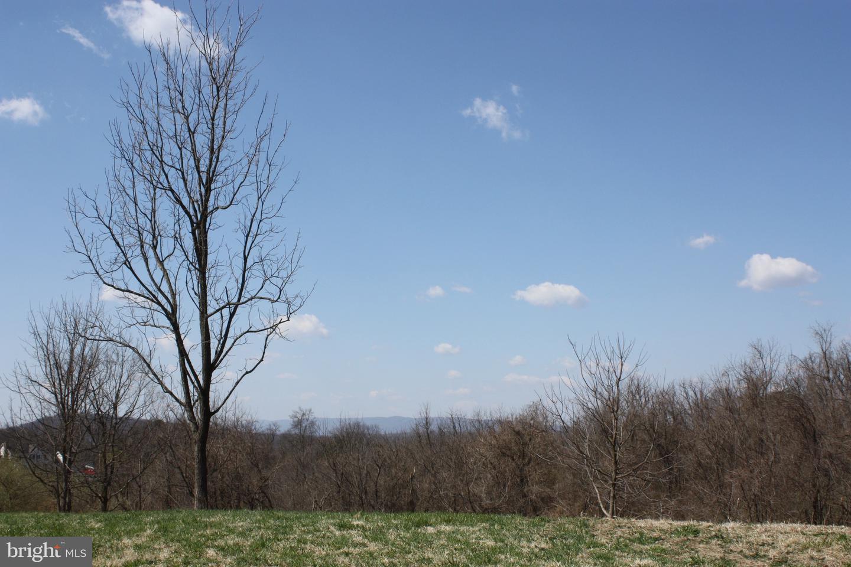 Land for Sale at Apple Pie Ridge Road Apple Pie Ridge Road Winchester, Virginia 22603 United States