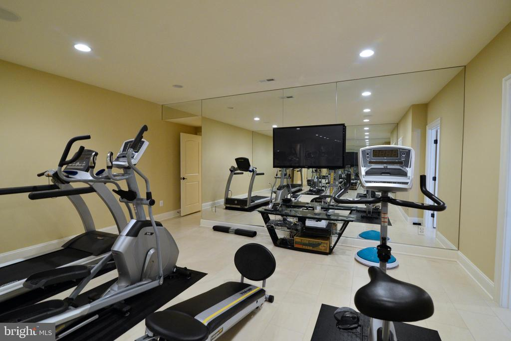 Exercise Room - 1635 ADMIRALS HILL CT, VIENNA