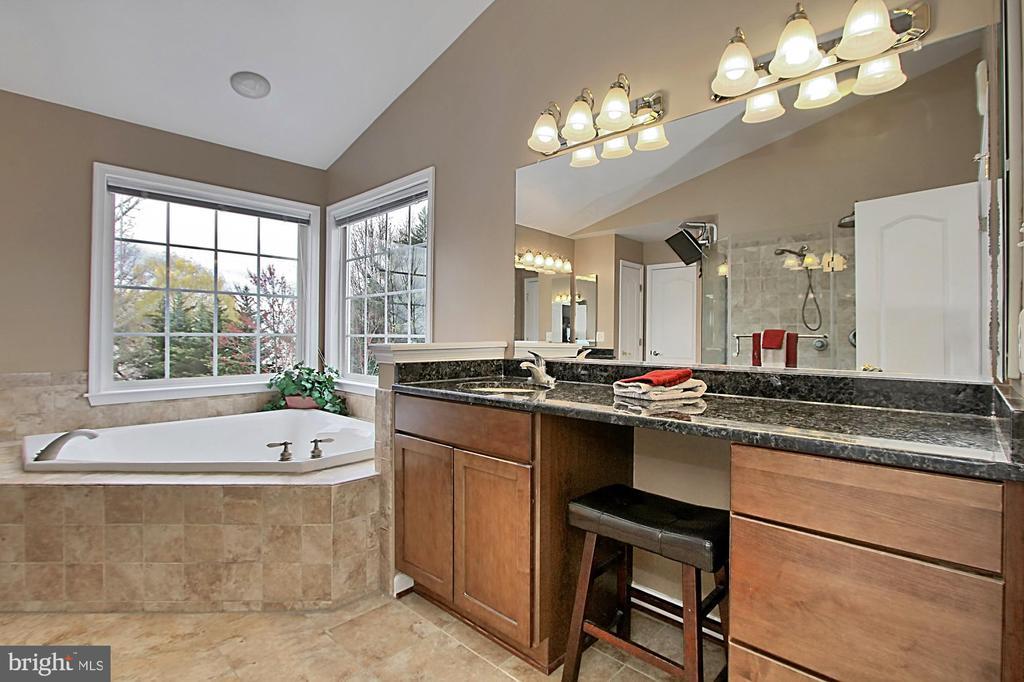 Master En Suite Bathroom - 42669 SILVERTHORNE CT, BROADLANDS