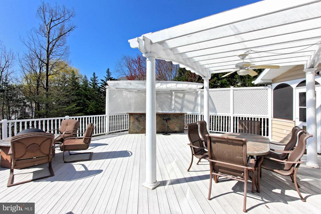 Perfect For Outdoor Entertaining - 42669 SILVERTHORNE CT, BROADLANDS
