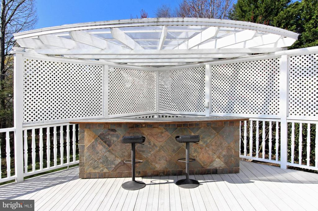 Outdoor Bar Area - 42669 SILVERTHORNE CT, BROADLANDS