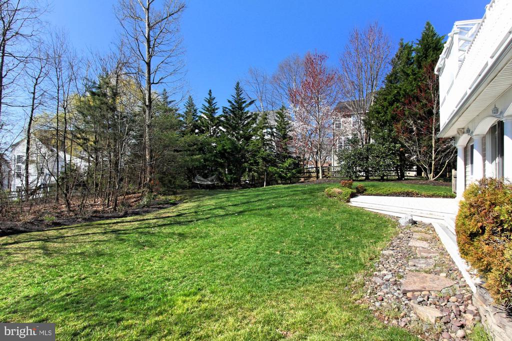 Rear Yard With Vibrant Landscaping - 42669 SILVERTHORNE CT, BROADLANDS