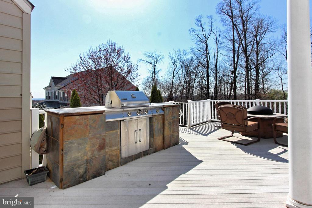 Outdoor Grill and Fire Pit Convey - 42669 SILVERTHORNE CT, BROADLANDS