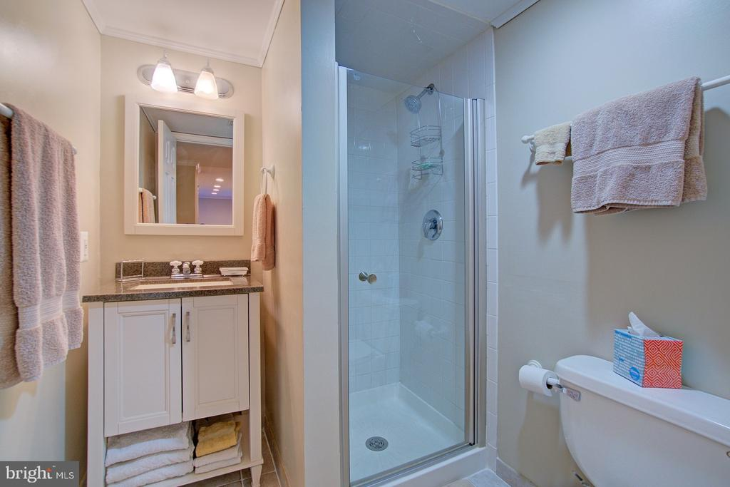 Full Bath in Basement - 10902 CARTERS OAK WAY, BURKE