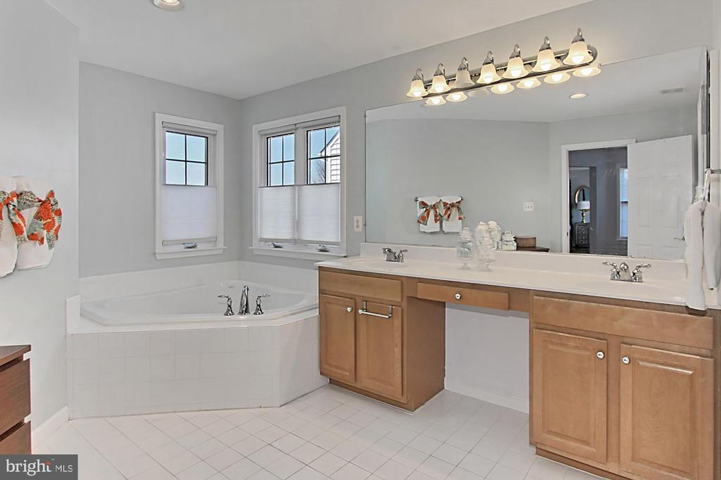 Mater Bath with soaking tub and shower - 42603 GOOD HOPE LN, BRAMBLETON