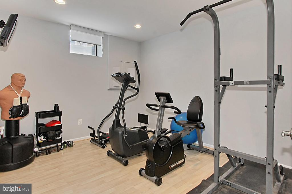 Basement gym - 42603 GOOD HOPE LN, BRAMBLETON