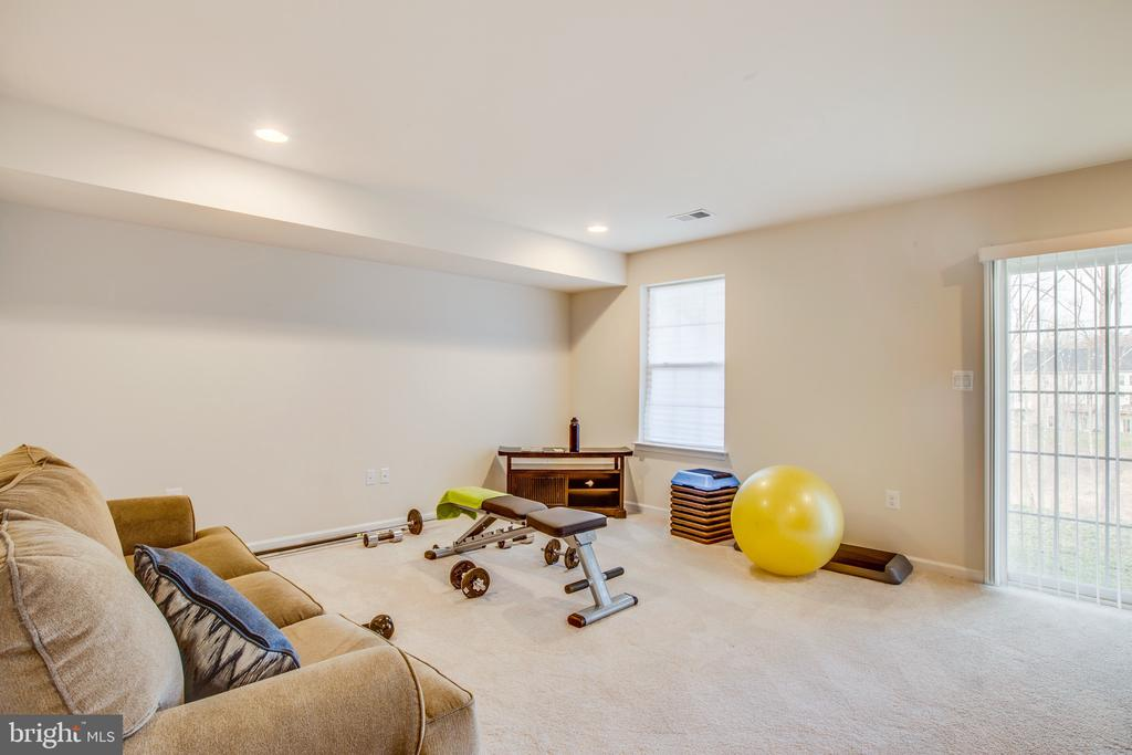 Family/exercise room - 108 TREE LINE DR, FREDERICKSBURG