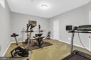 Lower level exercise room - 43769 FARMSTEAD DR, LEESBURG