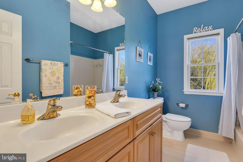 Hall bath - 43769 FARMSTEAD DR, LEESBURG