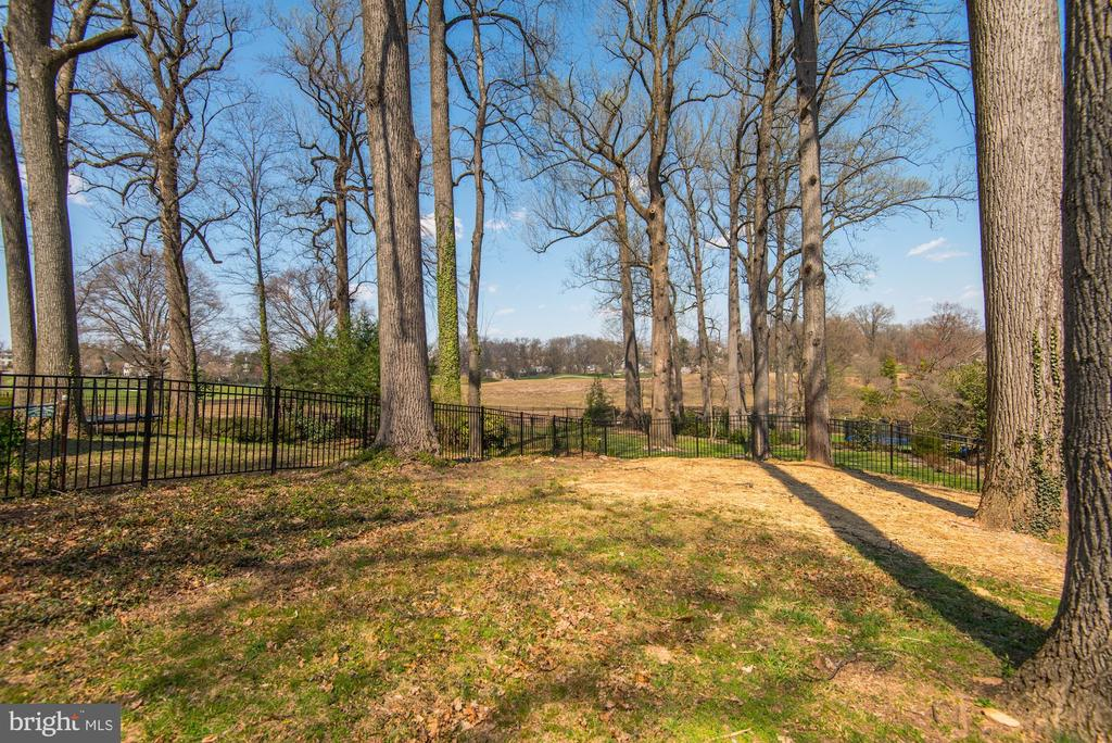 Backyard Views towards Golf Course - 2779 N WAKEFIELD ST, ARLINGTON