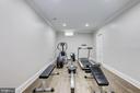 LL room w/ huge walk-in closet, en suite bath - 224 W WINDSOR AVE, ALEXANDRIA