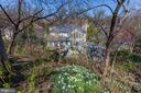 Spring daffodils cover the hillside! - 224 W WINDSOR AVE, ALEXANDRIA