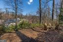 Upper level will soon be blooming w/ hydrangeas! - 224 W WINDSOR AVE, ALEXANDRIA