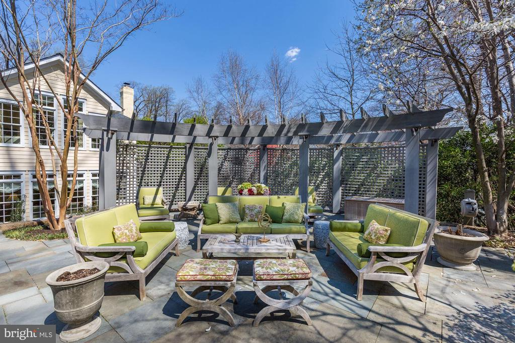 Great entertaining space w/ outdoor speakers - 224 W WINDSOR AVE, ALEXANDRIA