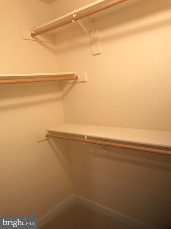 Walk-in closet 2 - 8913 GRIST MILL WOODS CT, ALEXANDRIA