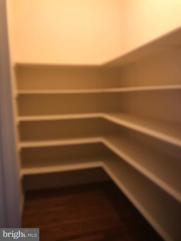 Pantry - 8913 GRIST MILL WOODS CT, ALEXANDRIA