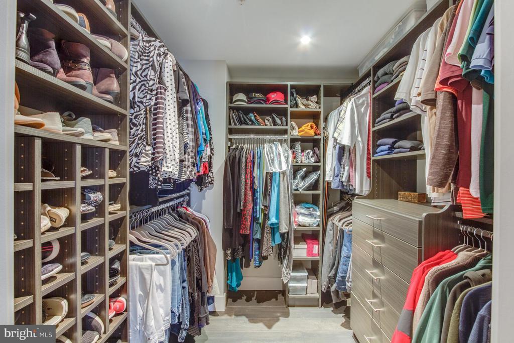 Bedroom Master Closet - 11990 MARKET ST #1101, RESTON