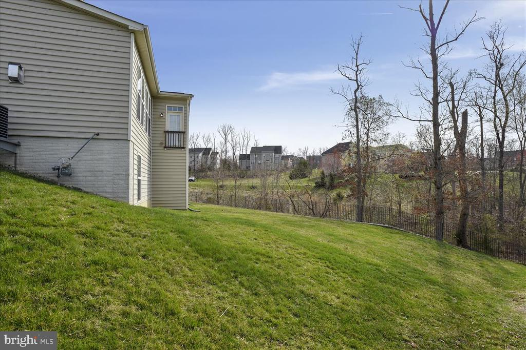 The lot goes back in to the trees.~ Over an acre. - 21568 BURNT HICKORY CT, BROADLANDS