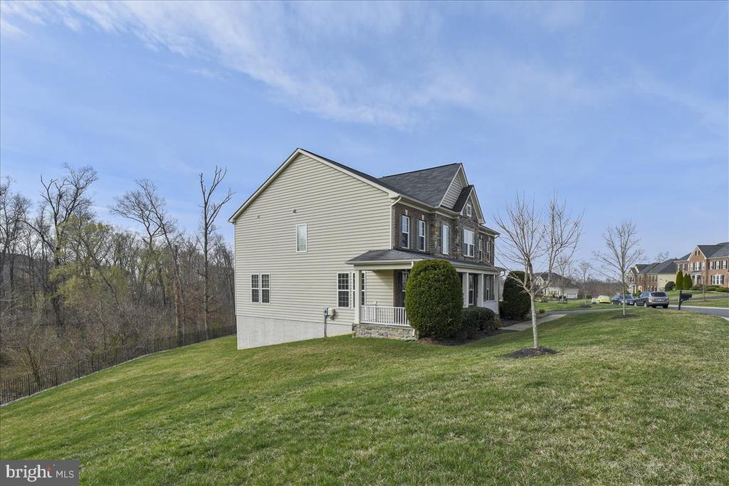 All the side yard is yours as well. - 21568 BURNT HICKORY CT, BROADLANDS
