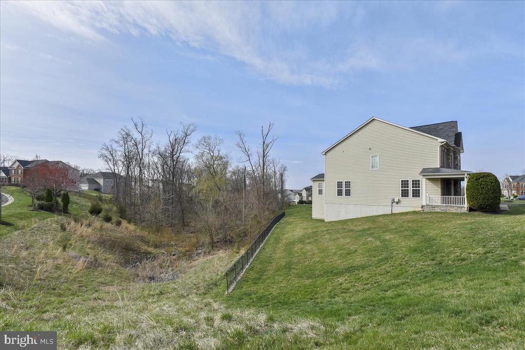Those woods are yours! - 21568 BURNT HICKORY CT, BROADLANDS