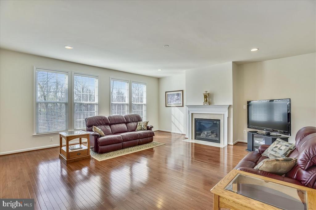 Family Room with Gas Fireplace - 21568 BURNT HICKORY CT, BROADLANDS