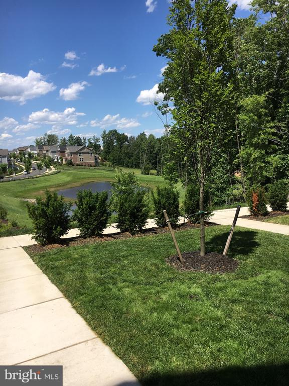 The View from your Front Door! - 117 SWEETGUM CT, STAFFORD