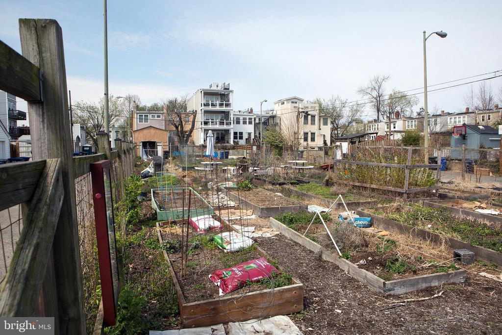 Hill East Community Garden! - 1728 D SE #1, WASHINGTON