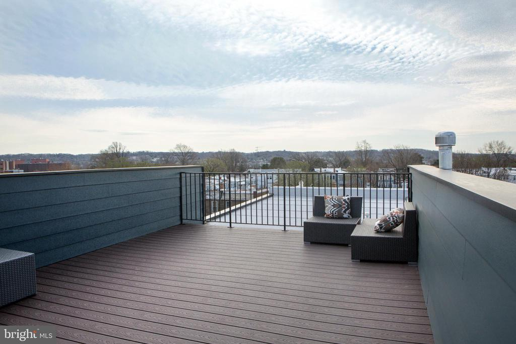 Rooftop Terrace with Magnificent City Views - 1728 D SE #2, WASHINGTON