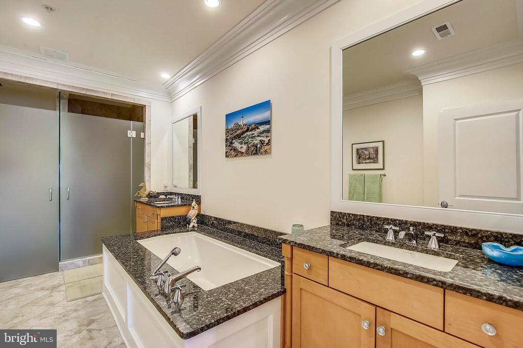 Owner's bathroom - 10884 SYMPHONY PARK DR, NORTH BETHESDA