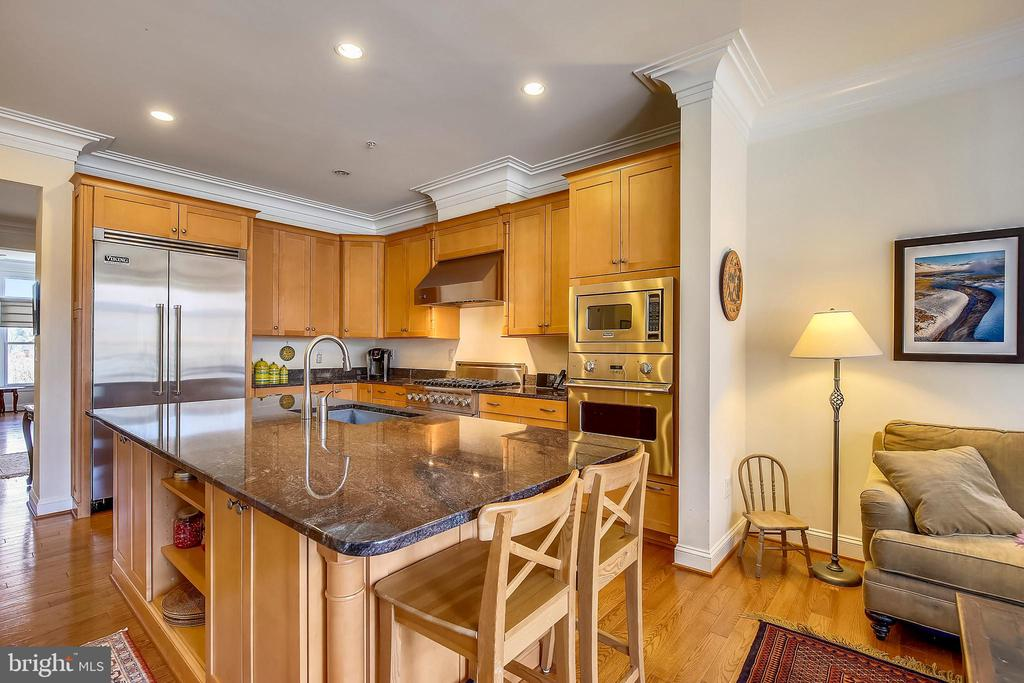 Gourmet Kitchen - 10884 SYMPHONY PARK DR, NORTH BETHESDA