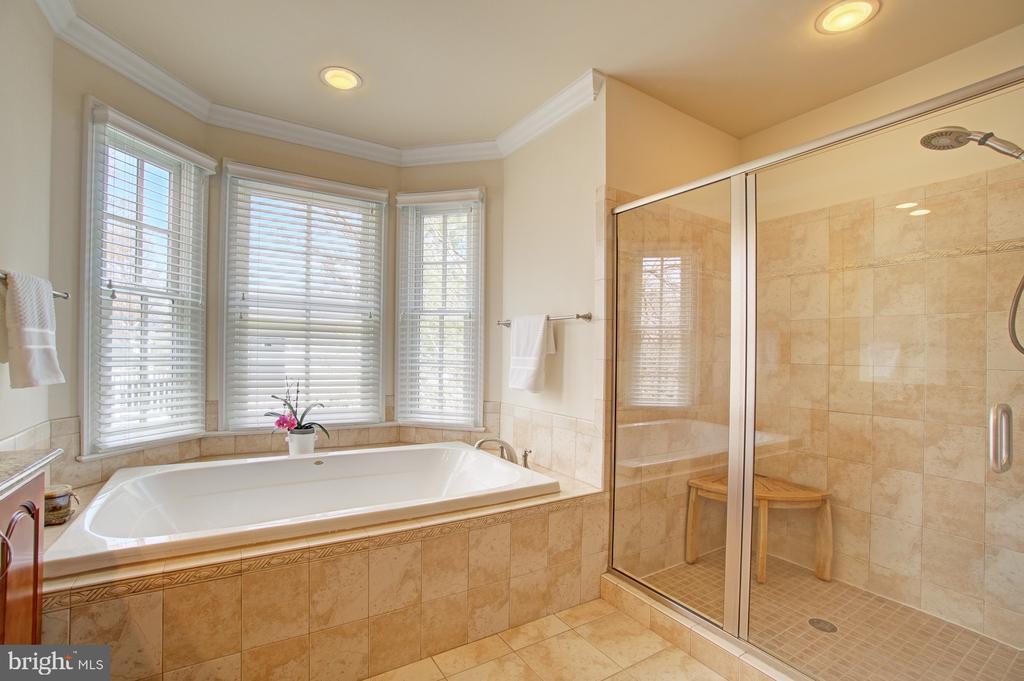 Master bath soaking tub & separate shower - 601 PARK ST SE, VIENNA