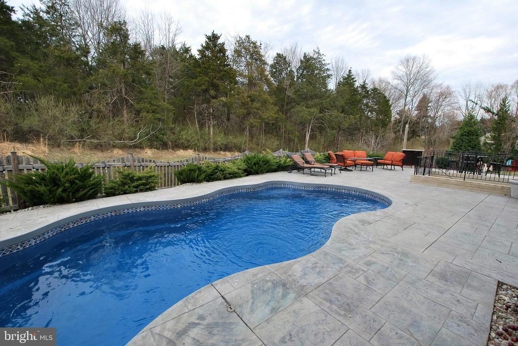 Beautifully Landscaped Saltwater Pool and Patio - 24436 PERMIAN CIR, ALDIE