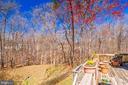 Backs to trees yet walk to Whole Foods! - 6109 GLEN OAKS CT, SPRINGFIELD