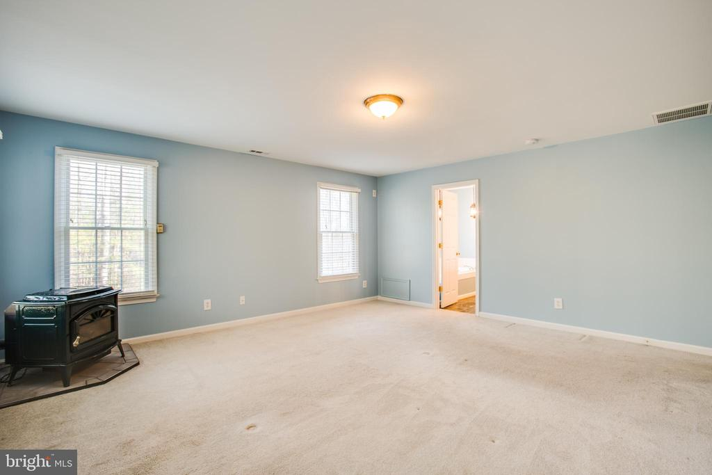 Master bedroom with pellet  stove - 7407 BARRISTER CT, SPOTSYLVANIA