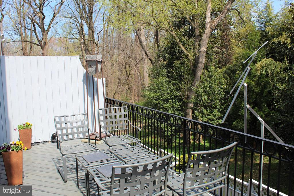 View of teh Park - 2131 N SCOTT ST, ARLINGTON