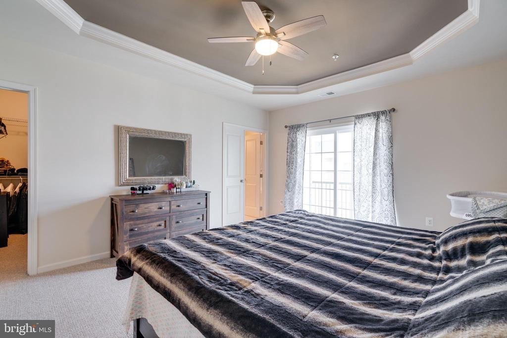 Gorgeous Master Bedroom - 23556 BUCKLAND FARM TER, ASHBURN