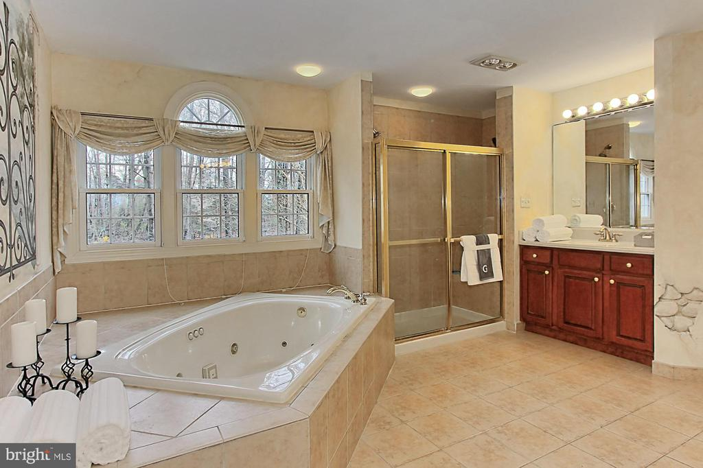 Master Bathroom with Jacuzzi and second Vanity - 8260 ROSELAND DR, FAIRFAX STATION