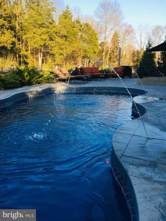 Low maintenance, heated pool with Fountains - 24436 PERMIAN CIR, ALDIE
