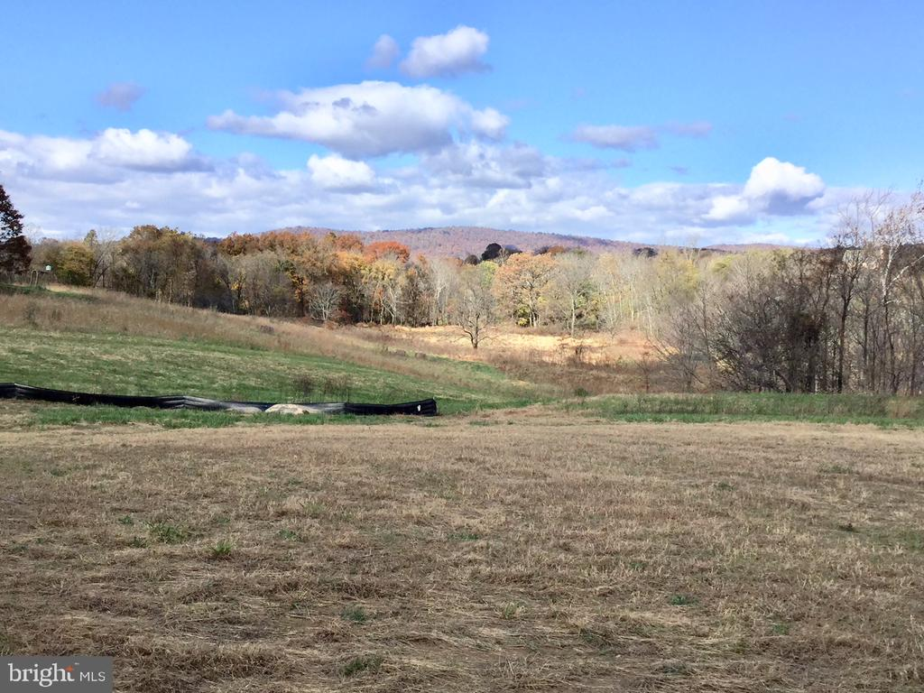 Meadow and Mountain Views from Back - 38042 GREENWOOD FARM LN, PURCELLVILLE