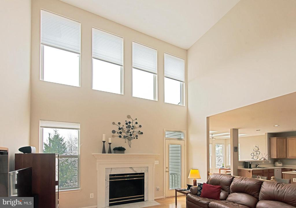 Family room windows - 5312 MAPLE VALLEY CT, CENTREVILLE