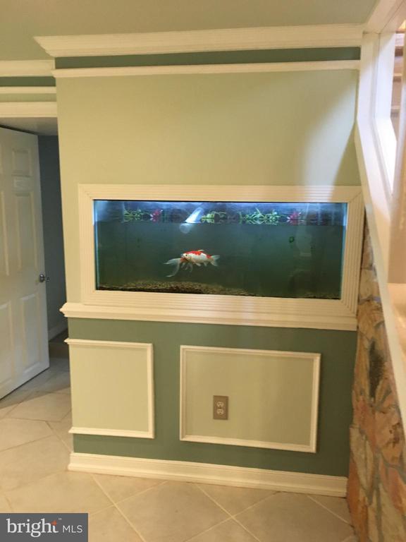 Build in Fish tank - 6425 GREENLEAF ST, SPRINGFIELD