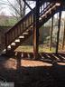 Fenced Back Yard - 44011 FALMOUTH CT, ASHBURN