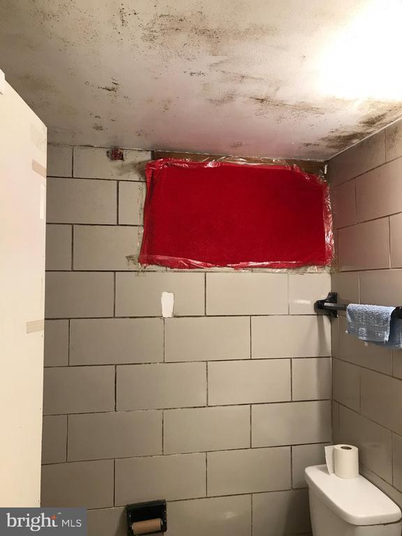 Basement bathroom - 5008 KENESAW ST, COLLEGE PARK