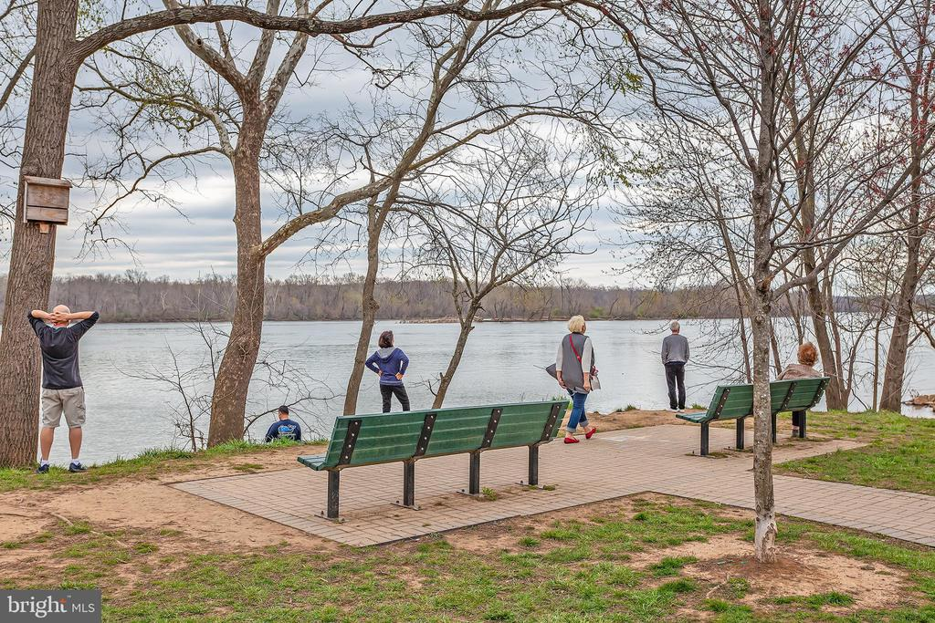 Potomac Heritage Trail along the Potomac River! - 20377 WATER VALLEY CT, STERLING
